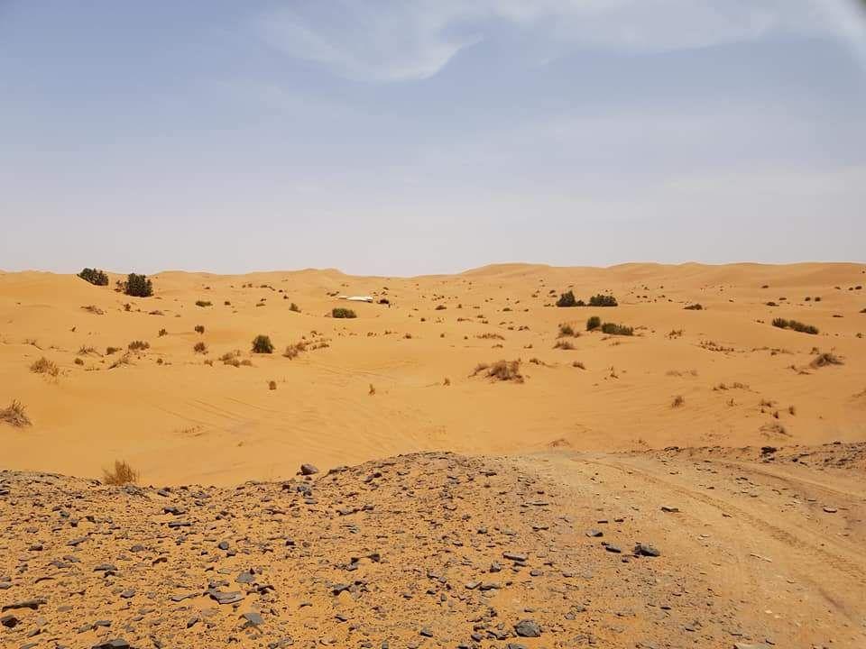 Gisteren geen internet in t bivak. Maar wel binnen gekomen.310 km paden duinen steile  hellingen. De duinen na cp2 waren zo zacht dat we over 8km 3 uur hebben gedaan. 2 keer vast gereden. De laatste duinen van 25km konden we niet in vanwege de avond. In t donker in de duinen is een slecht idee.vandaag starten wr met 35 km duinrn de hoogste tot nu toe.275 km totaal vertrek 9.30 maroc time.